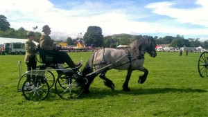 Rocky driven at Reeth show 17